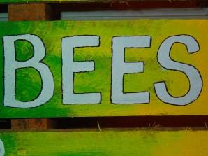 B.E.E.S!!!